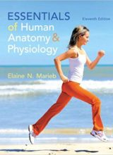 Essentials of Human Anatomy & Physiology Plus MasteringA&P with eText -- Access Card Package11th Edition