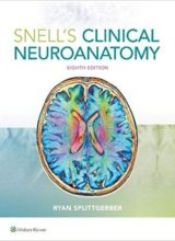 Snell's Clinical Neuroanatomy 8th Edition 2019