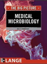 The Big Picture Medical Microbiology 1st edition