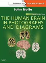 The Human Brain in Photographs and Diagrams 4th Edition 2014