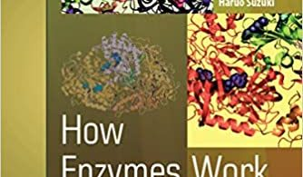 How Enzymes Work From Structure to Function 2nd Edition