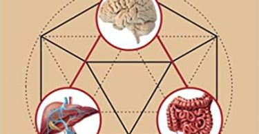 The Complex Interplay Between Gut-Brain, Gut-Liver, and Liver-Brain Axes 1st Edition